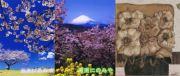 二宮町オリジナル年賀状 年賀状無料素材見本サムネイル